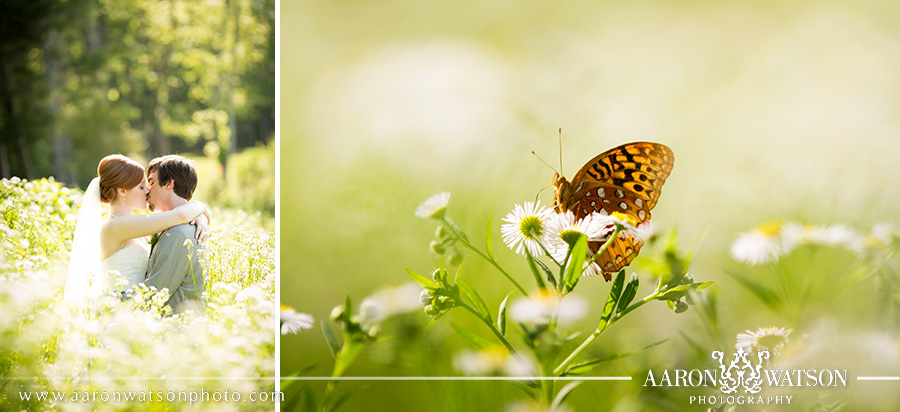 bride and groom with butterfly