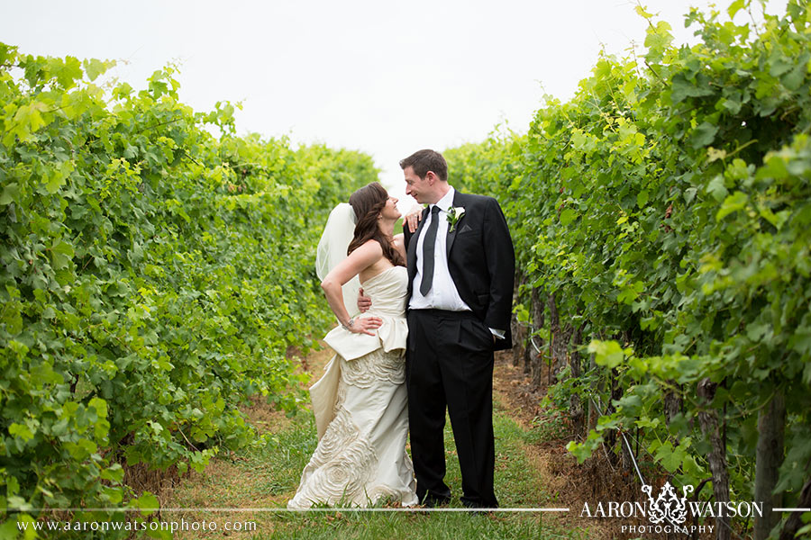 vineyard wedding pictures