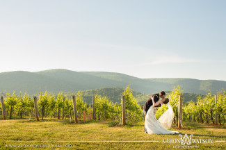 vineyard portrait