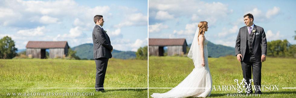 Early Mountain Vineyard Wedding Photographer