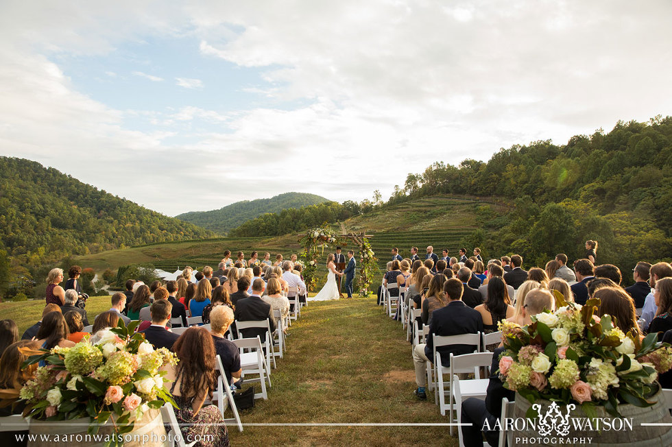 Vineyard and Winery Wedding Charlottesville VA