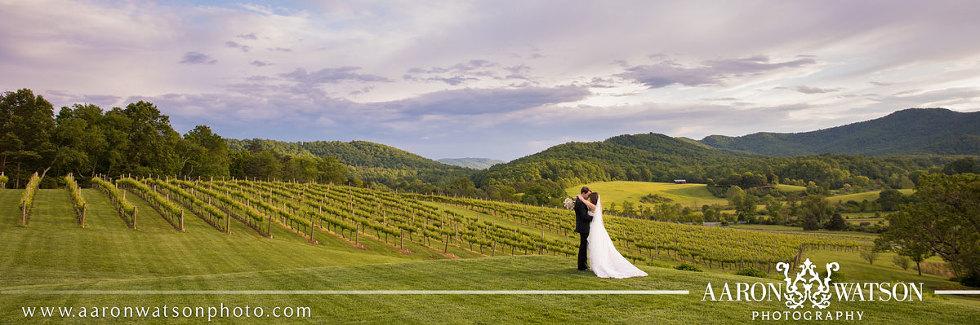 Best Pippin Hill Farm & Vineyards Wedding Photographers